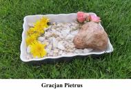 Gracjan-Pietrus